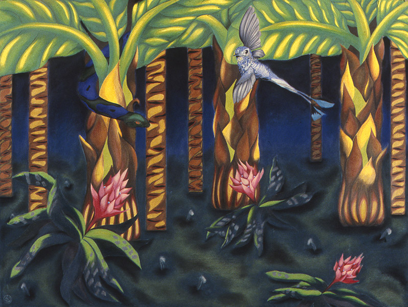 "TROPICAL INVITATION  color pencil, pastel, paper, 30 x 40""  1980"